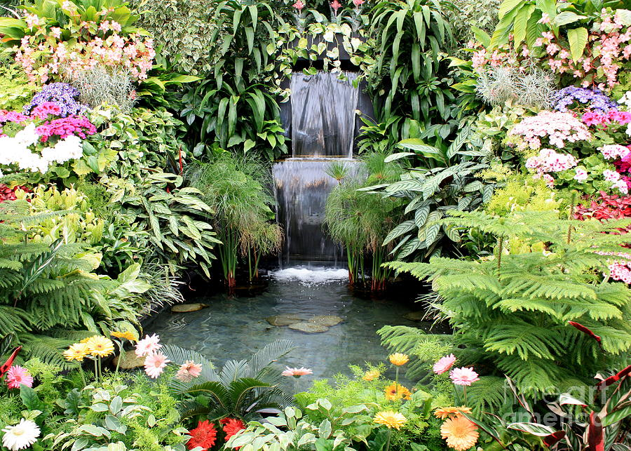 A well watered garden pure glory for Garden pond design books